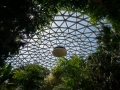 vancouver_bloedel_floral_conservatory04_dome_inside