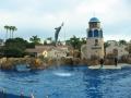 san_diego_seaworld09_Dolphin_jumping50