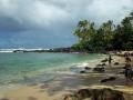 turtle_beach130