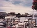 victoria04_harbour